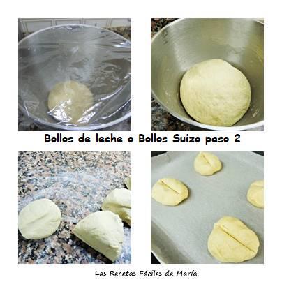 bollos de leche o bollos suizos paso 2