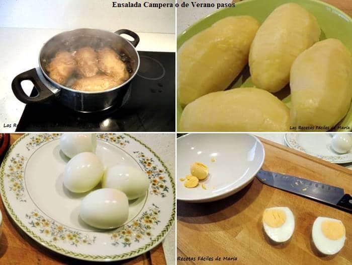 ensalada campera o de verano pasos de la receta