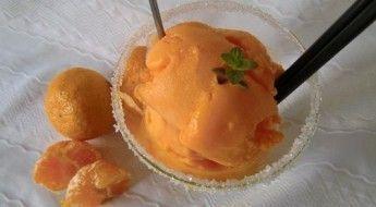 Helado de Mandarina casero