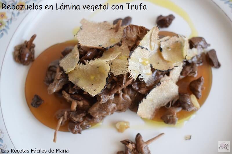Rebozuelos en lámina vegetal con trufa presentación sin champiñon