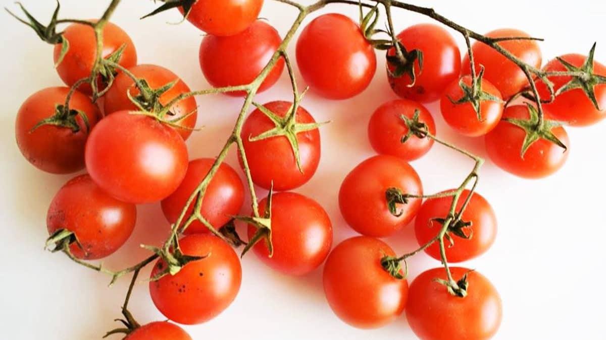 Recetas con tomates fáciles y ricas /Las Recetas Fáciles de María