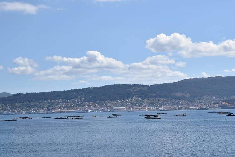 Visita la Ciudad de Vigo es una maravilla y compra sus productos Camarones salteados gallegos